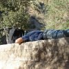 041 vallee du paradis percherie
